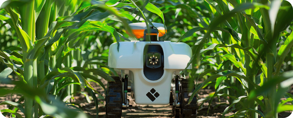 Danforth Center Scientists Explore Artificial Intelligence to Develop the Farm of the Future